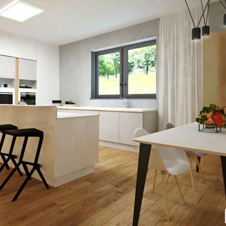 Moderná kuchyňa - návrh, dizajn, zariadenie